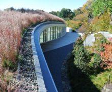 Тенденции архитектуры: признанные технологии озеленения крыш