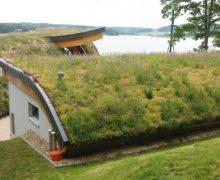 Живая крыша с элементами Георастр: мастер-класс от экспертов ZinCo