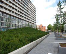 Лучшие технологии озеленения крыш — для популярных зданий в Нидерландах