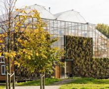 За стеклом: огород на крыше экспериментального дома в Роттердаме