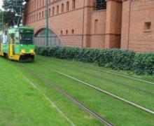 Озеленение крыш, стилобатов и даже трамвайных путей — все это ZinCo!