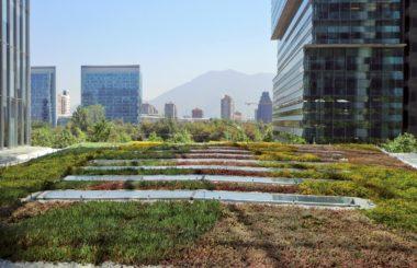 Орошаемое экстенсивное озеленение крыш эффективно для засушливых регионов