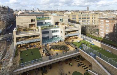 Озеленение террас городской школы в Лондоне