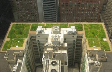 ТОП-5 самых впечатляющих в мире зеленых крыш
