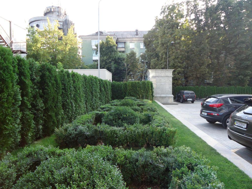 озеленение подземного паркинга