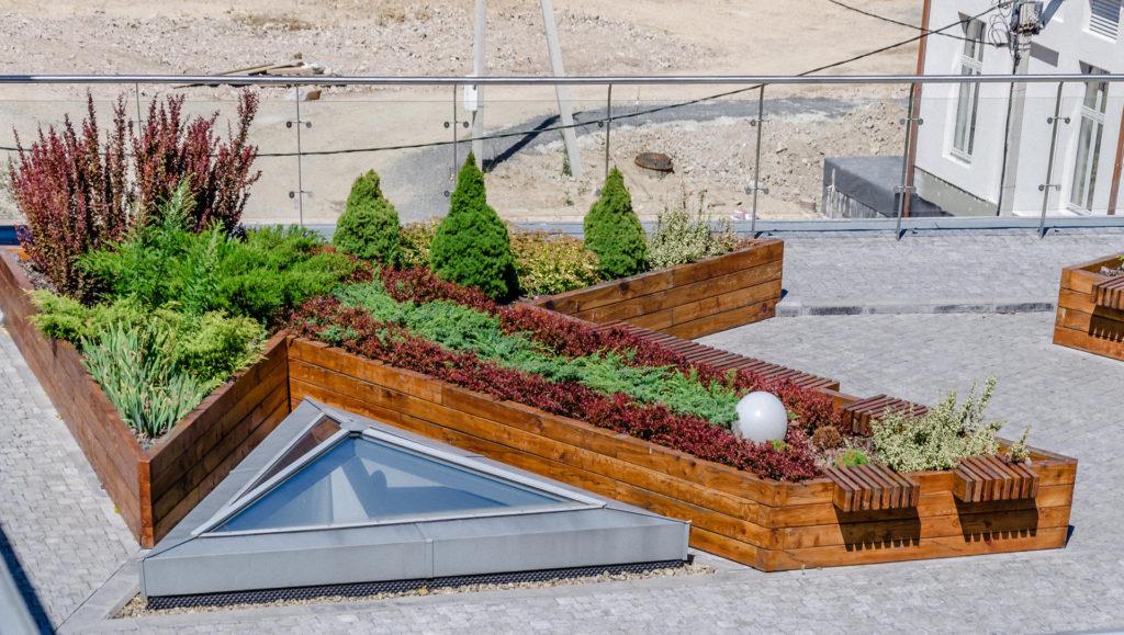 озеленение крыш в России