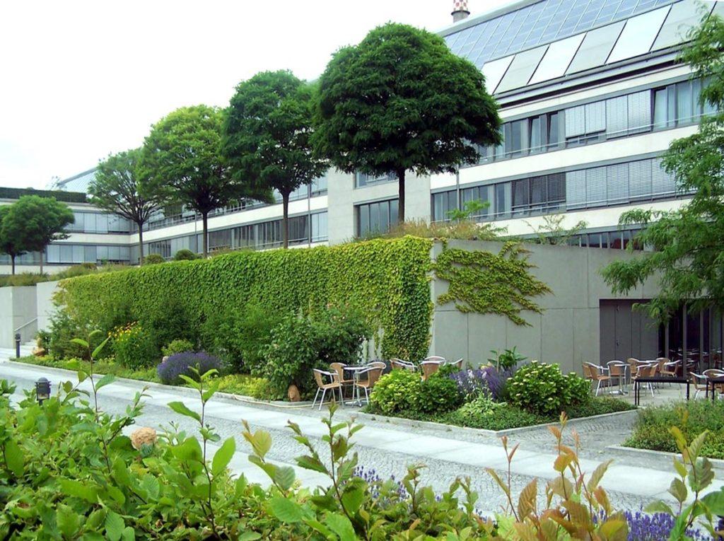 озеленение террасы у жилого комплекса