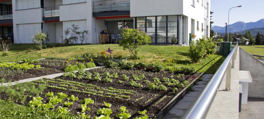озеленение плоских крыш