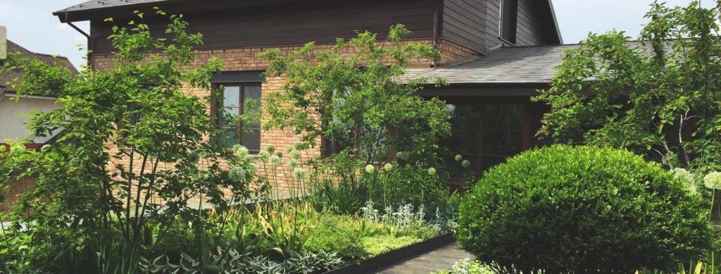 Интенсивное озеленение крыш